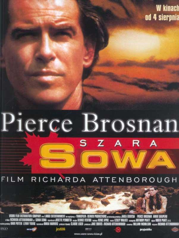 Серая сова (1998) смотреть онлайн бесплатно HD 72